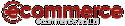 Ecommerce Logotyp_web